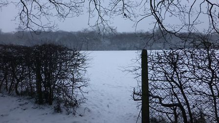 A blanket of snow covering the playing fields at Onslow St Audrey's School in Hatfield
