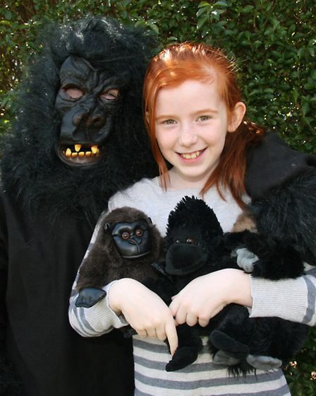 Eloise Atkins 10 is doing year long fundraising to release gorillas back into the wild