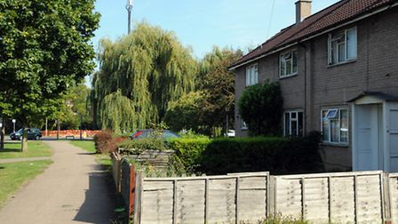 The mast towers over houses in Howlands