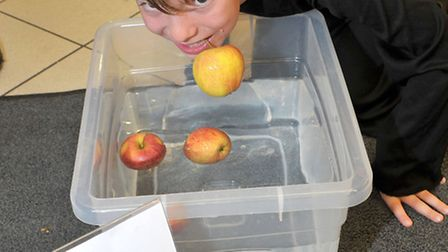 Sue Ryder Halloween charity event at Morrisons, Wisbech. Dylan Clifford apple bobbing. Picture: Stev