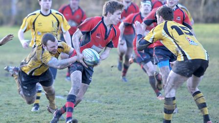 Wisbech vs Swaffham Rugby. Picture: Steve Williams.