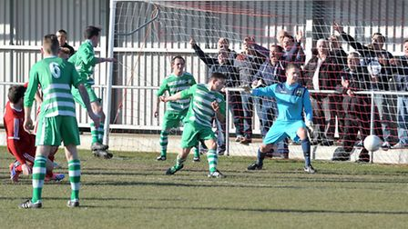 The home fans cheer one of Wisbech's goals aganst Newport Pagnell Town. Picture: Steve Williams.