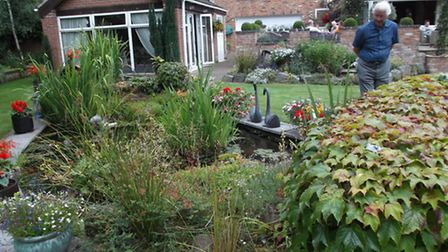 Wisbech St Mary Open Gardens day.