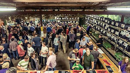 Last year's packed Elgood's Beer Festival. This year should be more of the same.