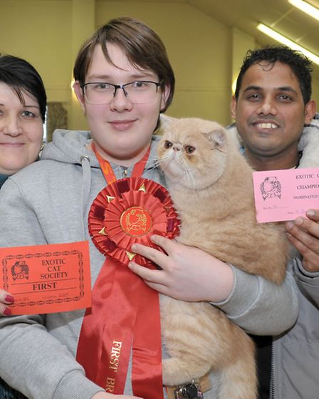 15th Exotic Cat Show championships held at Tydd St Giles Community Centre. Wisbech. Left: Mya, Caspe