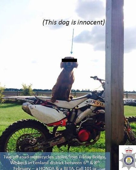 This Beta off-road motorbike was stolen from Friday Bridge, Wisbech between Friday February 6 and Mo