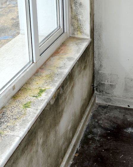 Damp and heating problems with Roddons at Chapel Avenue, Wisbech St Mary. Picture: Steve Williams,