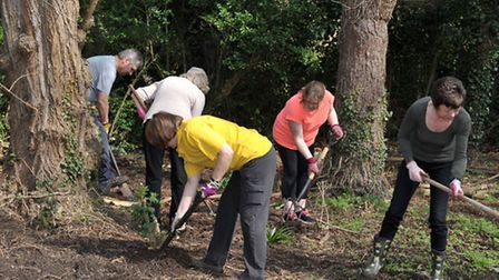 Glennfield Care Centre's Big Dig as part of National Gardening Week. Picture: Steve Williams.