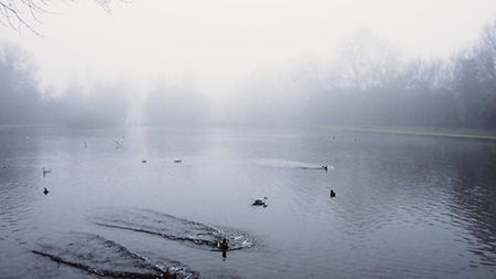 The fog at Welwyn Garden City's Stanborough Lakes.