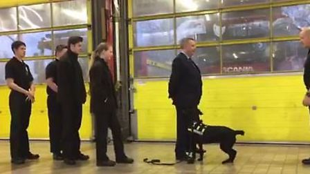 Cambridgeshire Police and Crime Commissioner Councillor Jason Ablewhite took part in a dog training