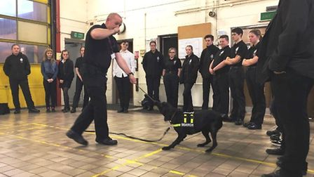 Wisbech Police have a visit from specialist sniffer dogs from the Alpha Canine Unit