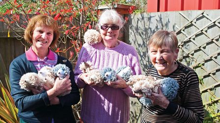 A parade of some of the prickly playfellows with hands-on helpers (left to right) Brenda Thorlby, Di