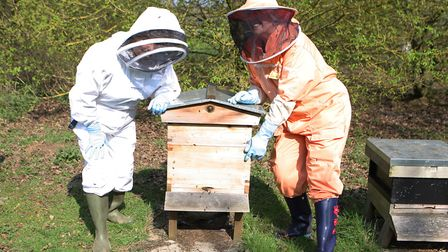 Bee Keeping Knebworth: Liava Nation with the bee hive