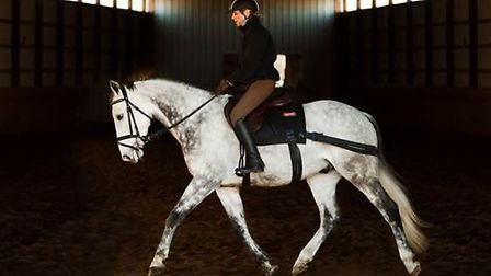 Researchers observed horses ridden with elastic bands attached to the saddle.