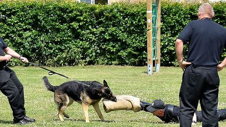 Uniformed services challenge day at CWA Wisbech, featuring four-legged guests, is a success.