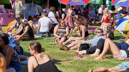 Macfest was held in the grounds of the Robin Hood and Little John pub. Picture: Luke Duffell