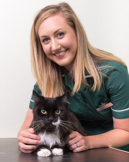 Miracle cat Reggie bounces back to health thanks to Paddons Vets in Wisbech ? a year after cancer sc