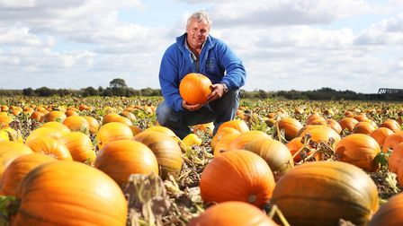 KJ Curson Growers in Upwell, Wisbech, supplies more than 500 Asda stores in the UK
