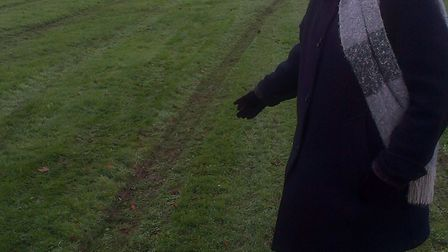 Lib Dem borough councillor Siobhn Elam has blasted Serco over the grass in Parkway. Picture credit P
