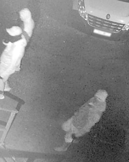 Theft of valuable Morris Minor pedal car in Wadhurst - do you recognise these men, who are believed