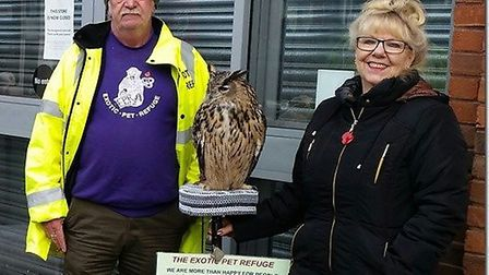 Hogwarts comes to Wisbech as owls take over Horsefair Shopping Centre thanks to Exotic Pet Refuge vo