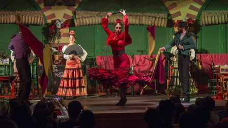 Dancers and musicians performing the Flamenco, a form of Spanish folk music and dance, during a dinn