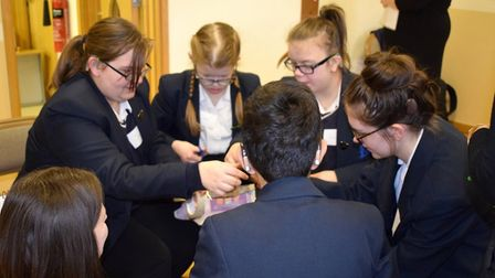 Pupils enjoying the event. Picture: Knightsfield School