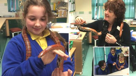 Pupils at Anthony Curton Primary School in Walpole St Peter proved they had the backbone to hold the
