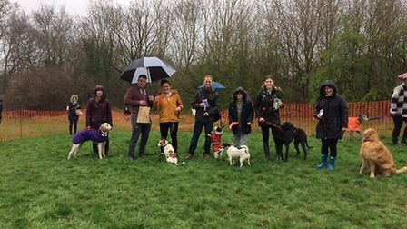 The competitive pooches and their owners at the Potters Bar dog show. Picture: Supplied.