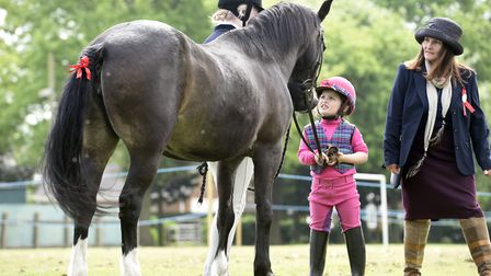 Upwell Horse and Pony Show brought in the crowds this year. Photo: Ian Carter