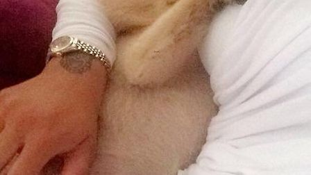 Natasha Major believes the teen was trying to steal her dog in Hatfield. Picture: Supplied.