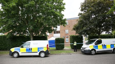 Police and forensics teams on the scene in Long Ley, Panshanger. Picture: DANNY LOO