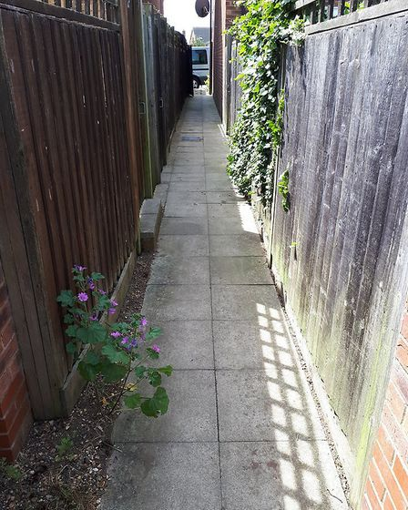 They alleyway where the attack happened in Hatfield. Picture: Lena Masterman.