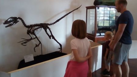 Dinosaur fans are in for a treat as a free exhibition is available at Wisbech Museum all summer. Pic