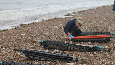 Six rescued common seal pups made their way to the sea and into the water at Hunstanton after spendi
