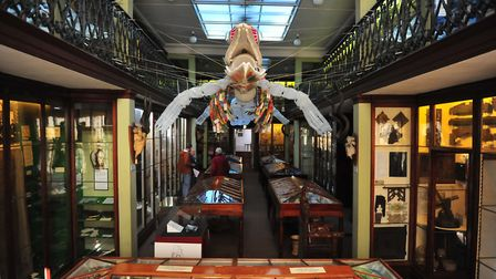Fears that Wisbech & Fenland Museum could close as funds run low. Picture: HARRY RUTTER
