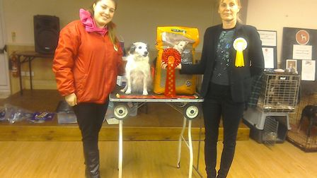 Nearly £500 was raised for STEM cell research at a charity dog show in Walton Highway on Saturday, J