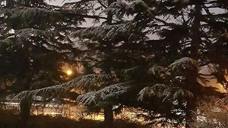Light January snow in Springfields, Welwyn Garden City. Picture: Chris Coulson