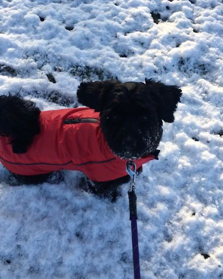 Snow is no excuse for abandoning your fashion sense, as Cosmo demonstrates stylishly. Picture: Livia