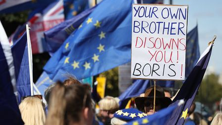 Anti-Brexit protesters opposite the Houses of Parliament in Westminster after Jo Johnson left his br
