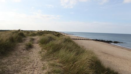 The dunes on the beach at Horsey. Picture: BELLE AIRE.