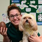 Far too tempting: a Welwyn vet has advised keeping Easter chocolate away from pets this Easter. Pict