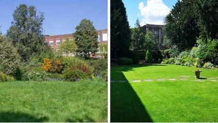 Before and after the Wisbech Castle gardens transformation. Pictures: DAVID TOPGOOD PHOTOGRAPHY/ROGE