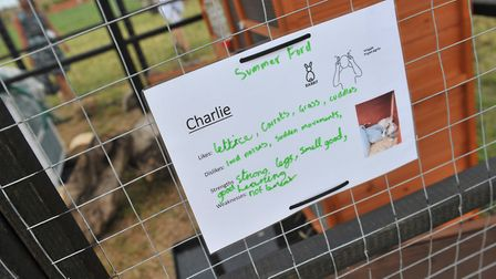 Grand opening! A farm to help people improve their wellbeing through animal therapy has opened on Ly