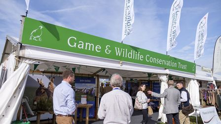 The Game & Wildlife Conservation Trust's stand at The Game Fair. Picture: Jon Farmer