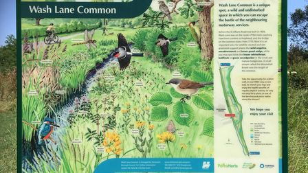 The new improved Wash Lane Common. Picture: HBC.