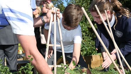 Pupils pick some vegetables at the opening of St John's School Digswell Sensory and Wellness garden.