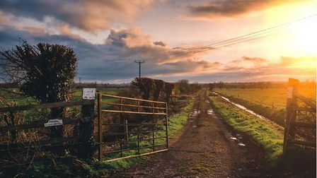 A new report focuses on Fenland, an area of Cambridgeshire with a large population of EU migrants, a