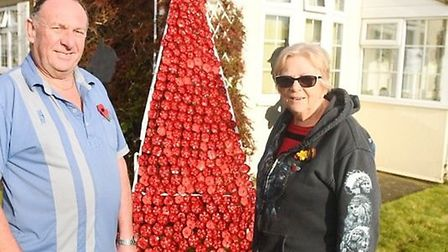 Poppy display made out of plastic bottles in Fenland village remembers the fallen. Picture: IAN CART