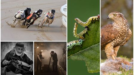 Top photographer Peter Malton showcased his work to members of the Wisbech & District Camera Club. P